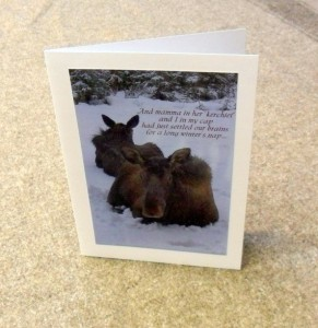 Alaskan moose Christmas card